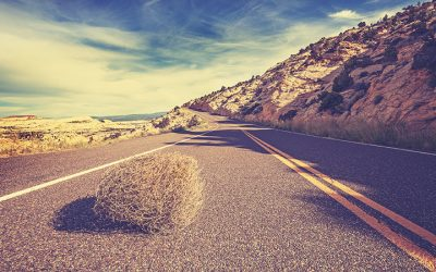 Avoiding Tumbleweed in Large Resort Developments
