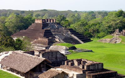 Mexico Research Report In Progress