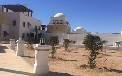 Kenetic Instruct New Landscaping at Ancient Sands Building 4
